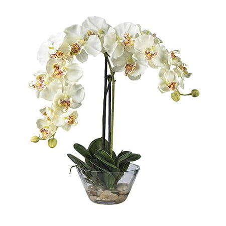 Nearly Natural Phalaenopsis with Glass Vase Silk Flower - Silk Glass
