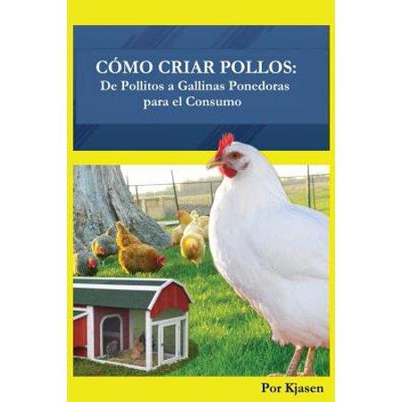 Como criar pollos de pollitos a gallinas ponedoras para for Como criar peces para consumo humano