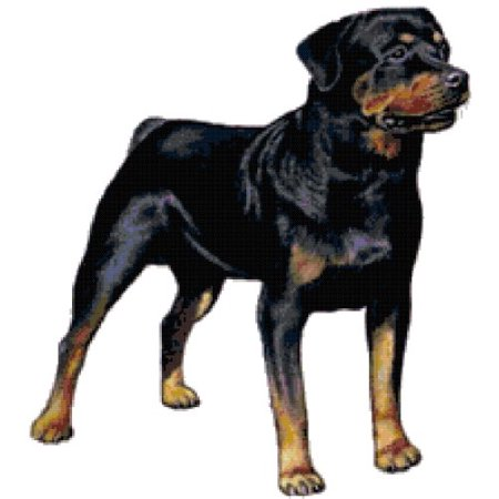 Tiger Cross Stitch Pattern - Rottweiler Dog Counted Cross Stitch Pattern