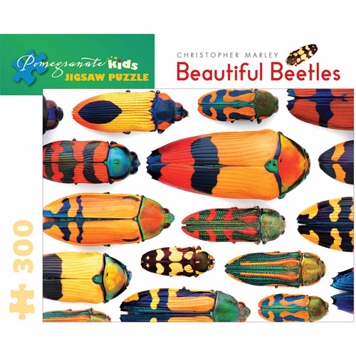 Beautiful Beetles Puzzle