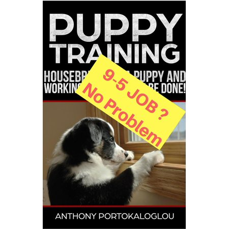 PUPPY TRAINING: Housebreaking a Puppy and Working Full Time CAN be Done! -