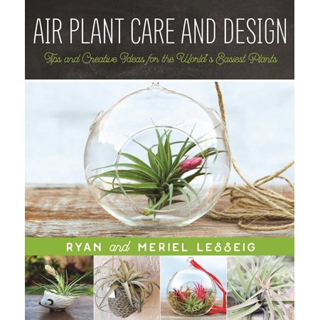 Air Plant Care and Design : Tips and Creative Ideas for the World?s Easiest Plants ()