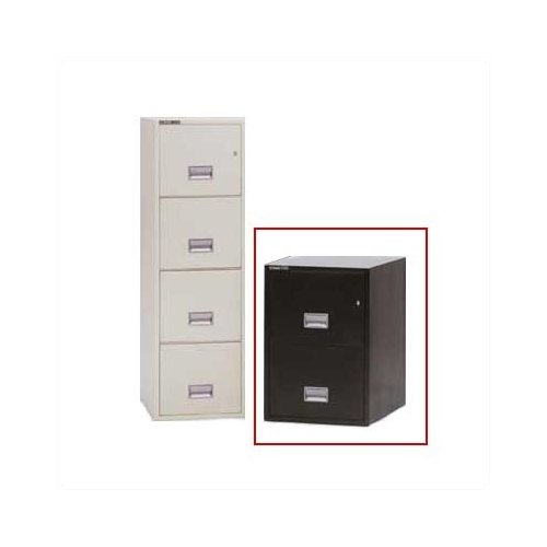 Sentry Safe Series 2500 Fire Resistant Two-Drawer Vertical Letter File
