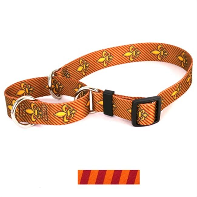 Yellow Dog Design Team Spirit Martingale Collar - Small