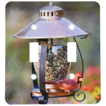 3dRose Northern Cardinal on copper lantern hopper bird feeder, Marion Co. IL, Double Toggle Switch