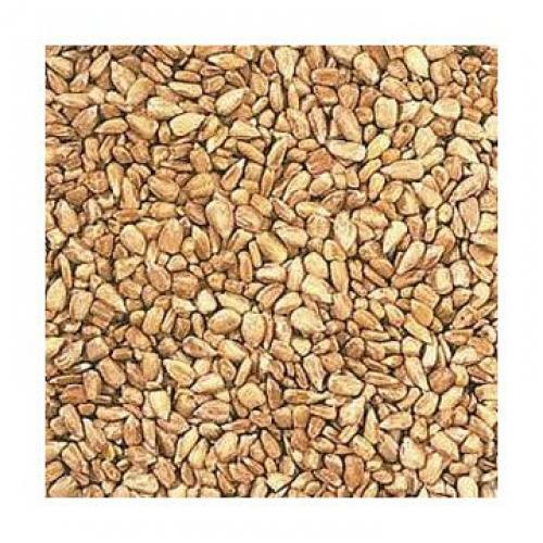 Shafer seed Sunflower Hearts for Wild Birds 25 lbs.