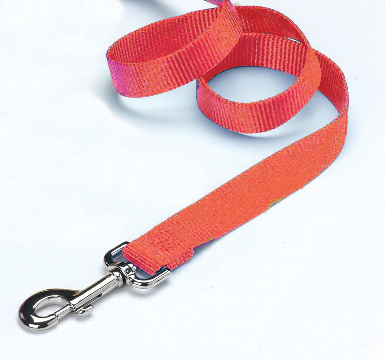 Hamilton Pet Company-Single Thick Nylon Lead- Mango 1 In X 4 Ft