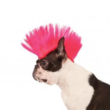 Dog Mohawk (Mohawk Dog Wig - Electric Pink)