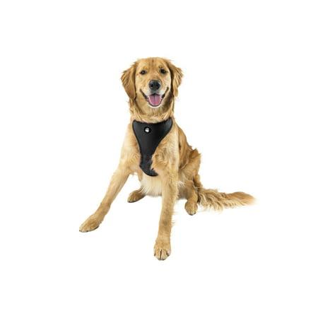 FurHaven Pet Harness | Mesh Dog & Cat Harness, Black, Extra Large