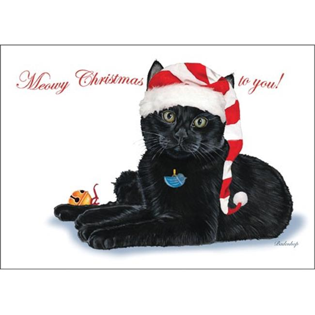Pipsqueak Productions C730 Black Cat Cat Christmas Boxed Cards - Pack of 10