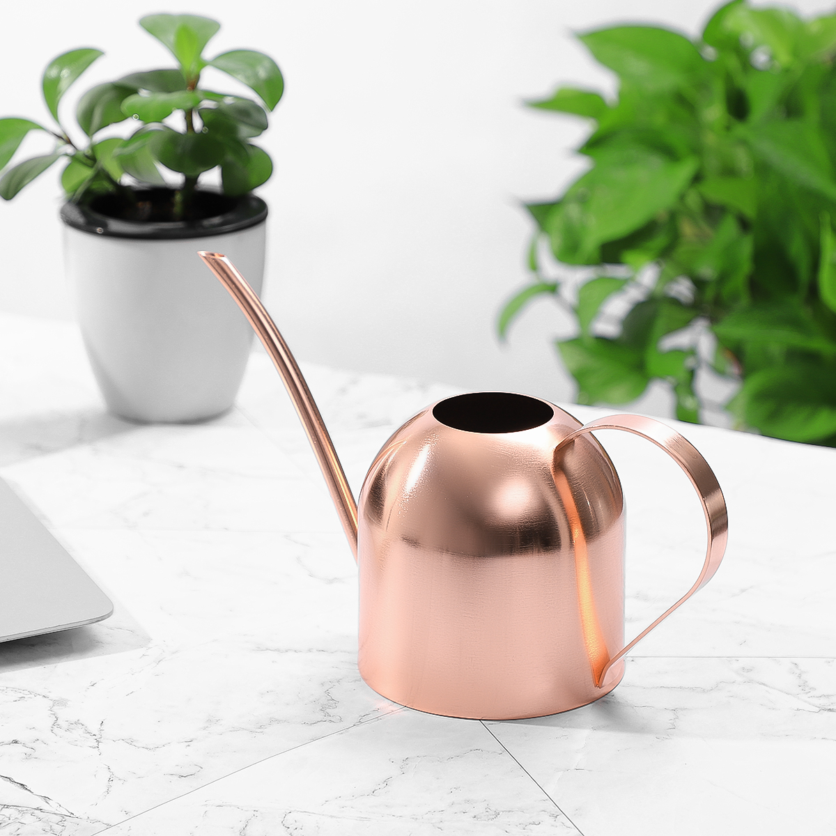 Narrow Long Spout Watering Can Indoor Outdoor Plastic Watering Pot 1000ml