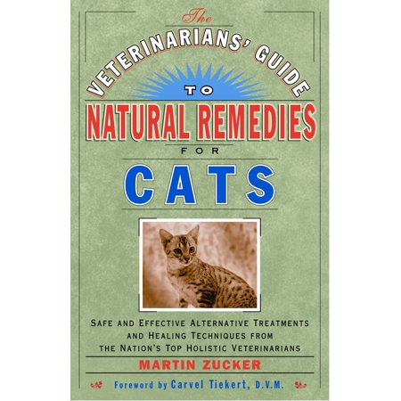 The Veterinarians' Guide to Natural Remedies for Cats : Safe and Effective Alternative Treatments and Healing Techniques from the Nation's Top Holistic - Keeping Cats Safe On Halloween