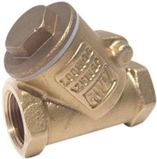 Rwv Brass Swing Check Valve Y Pattern With Threaded Ends, 1 In., Lead Free
