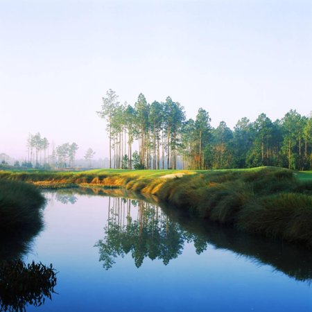 Reflection of Trees on Water in a Golf Course, Slammer and Squire Golf Course, St. Augustine Print Wall Art By Green Light Collection