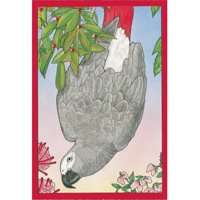 Pipsqueak Productions C873 African Grey Holiday Bird Christmas Boxed Cards - Pack of 10