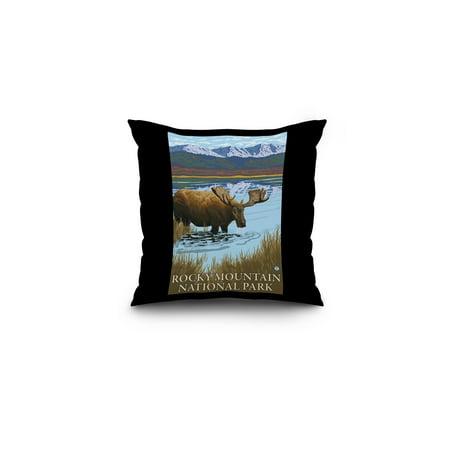 Rocky Mountain National Park  Colorado   Moose Drinking   Lantern Press Artwork  16X16 Spun Polyester Pillow  Black Border
