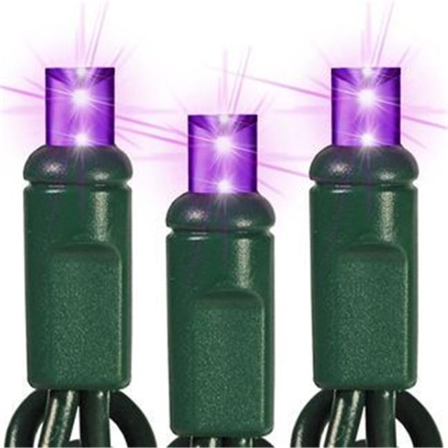 Queens of Christmas C-25MMPU-6G C-25MMPU-6G  - 25 count Commercial Grade Conical 5MM Purple LEDs on Green Wire