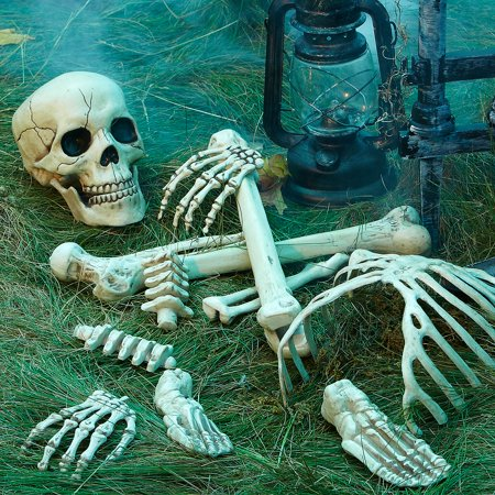 Bag of Bones - Bag Of Bones Halloween Decoration