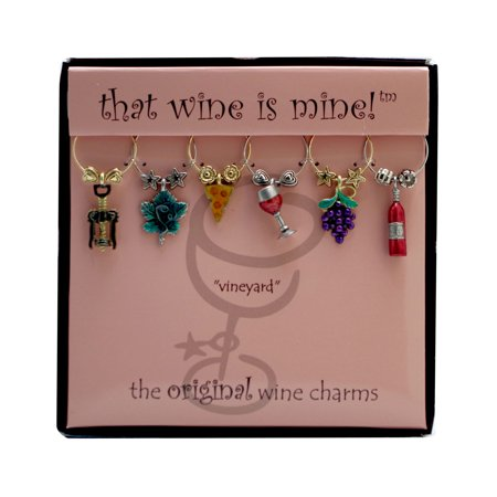 Wine Things 6-Piece Vineyard Wine Charms, (Painted Wire)
