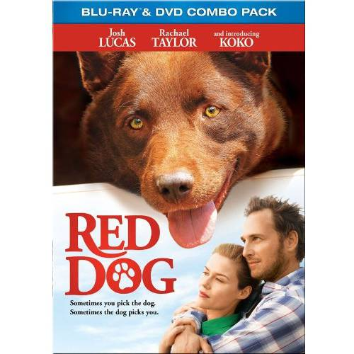 Red Dog (Blu-ray + DVD) (Widescreen)