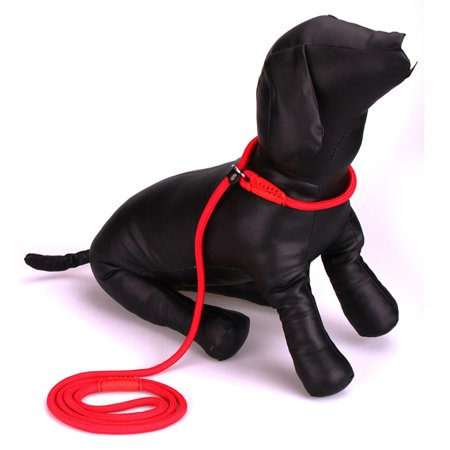 Adjustable Nylon Traction Rope Slip Lead Training Leash Collar Red Small Pet Dog