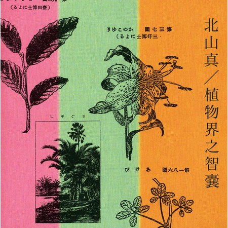 Makoto Kytayama   Practical Encyclopedia Of Kingdom P  Cd