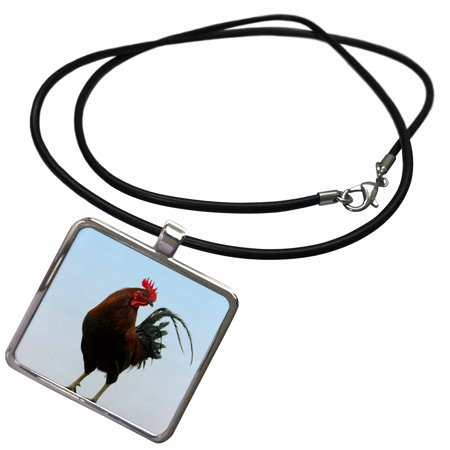 3dRose Rooster, Banaue, Ifugao Province, Philippines - AS29 KSU0043 - Keren Su - Necklace with Pendant (ncl_132901_1) ()