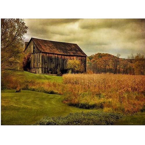 "Trademark Fine Art ""Old Barn on Rainy Day"" Canvas Wall Art by Lois Bryan"
