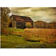 "Trademark Fine Art ""Old Barn on Rainy Day"" Canvas Wall Art by Lois Bryan"