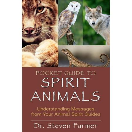 Pocket Guide to Spirit Animals : Understanding Messages from Your Animal Spirit Guides (Messages From Spirit)