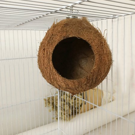 Coconut Nest - Coconut Shell Bird's Nest And Perch, Natural Breeding Home, Cozzy Hanging Toy Bed For Small Animals Like Parrot Squirrel Hamster