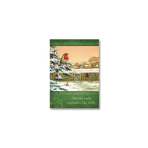 Abbey Press 53352T All the Earth Celebrates. . .  Christmas Cards