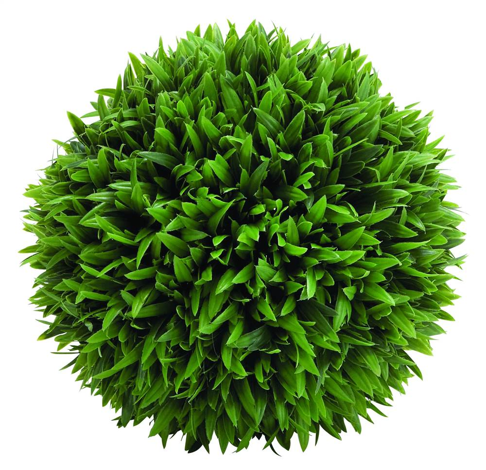 Amazingly Styled Grass Ball