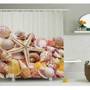 Seashells Decor Shower Curtain Set Pile Of Nature Collection Beach Theme Sea Life Creatures