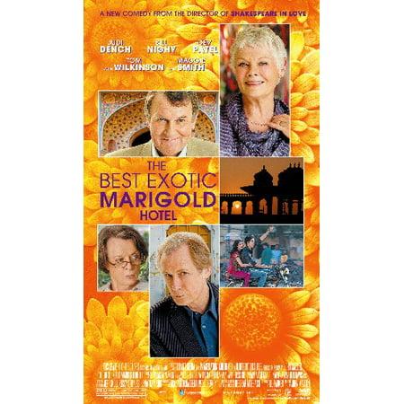 The Best Exotic Marigold Hotel 11inx17in Mini Movie