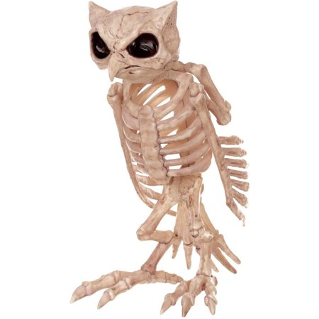 Skeleton Owl Halloween Decor (Owl Halloween)