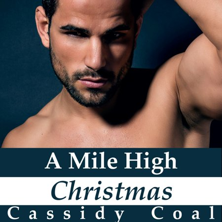 A Mile High Christmas (A Mile High Romance Book 1) -
