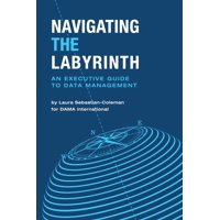 Navigating the Labyrinth : An Executive Guide to Data Management