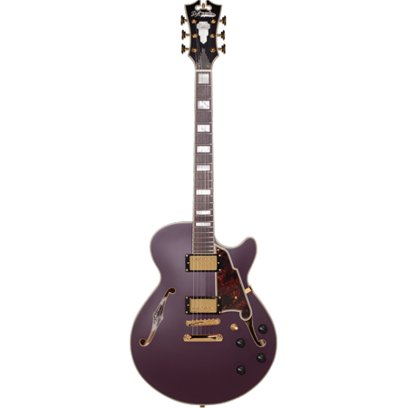 D'Angelico Deluxe SS Semi-Hollow Electric Guitar - Matte Plum](amt electronics ss 20 guitar preamp)