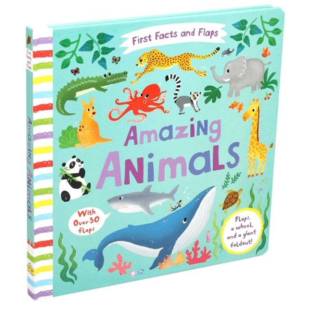 First Facts and Flaps: First Facts and Flaps: Amazing Animals (Board book)