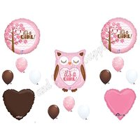 Baby Girl Owl Shower Balloons Decorations Supplies