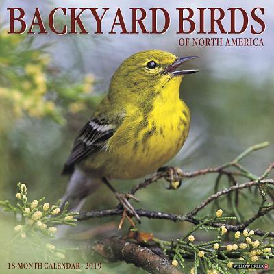 Backyard Birds 2019 Wall Calendar (Other)