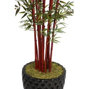 "Laura Ashley 98"" Tall Harvest Bamboo Tree in 16"" Fiberstone Planter"