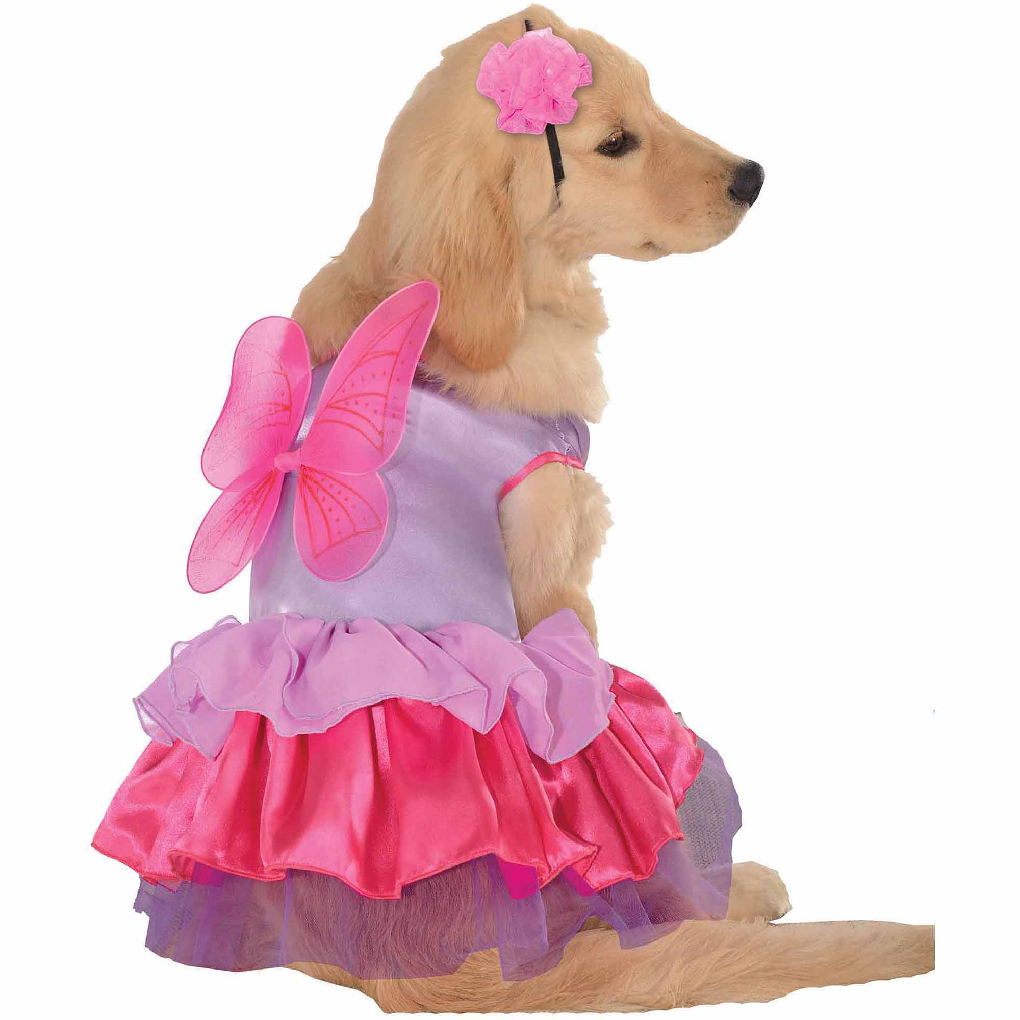 Pixie Pup Halloween Pet Costume (Multiple Sizes Available)