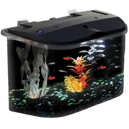 hawkeye 5-gallon panaview aquarium with led lighting and power ...