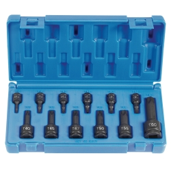 Assorted Drive 12 Piece Int. Star Impact Driver Set