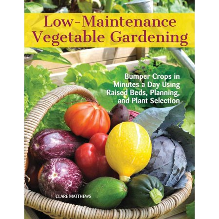 Low-Maintenance Vegetable Gardening : Bumper Crops in Minutes a Day Using Raised Beds, Planning, and Plant