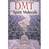 Dmt: The Spirit Molecule : A Doctor's Revolutionary Research Into the Biology of Near-Death and Mystical Experiences (Paperback)