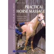 Practical Horse Massage : Techniques for Loosening and Stretching Muscles