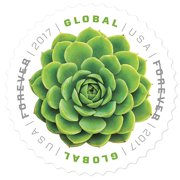Green Succulent 10 Sheets of 10 Global USPS First Class International  Forever Postage Stamps (100 Stamps)